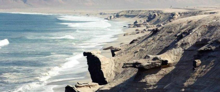 Contraloría detectó deficiencias en el cuidado de la Reserva La Rinconada de Antofagasta